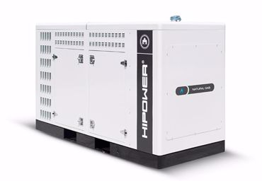 Picture for category Natural Gas Generators